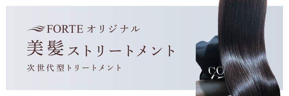 フォルテ(FORTE)オリジナル 美髪ストリートメント
